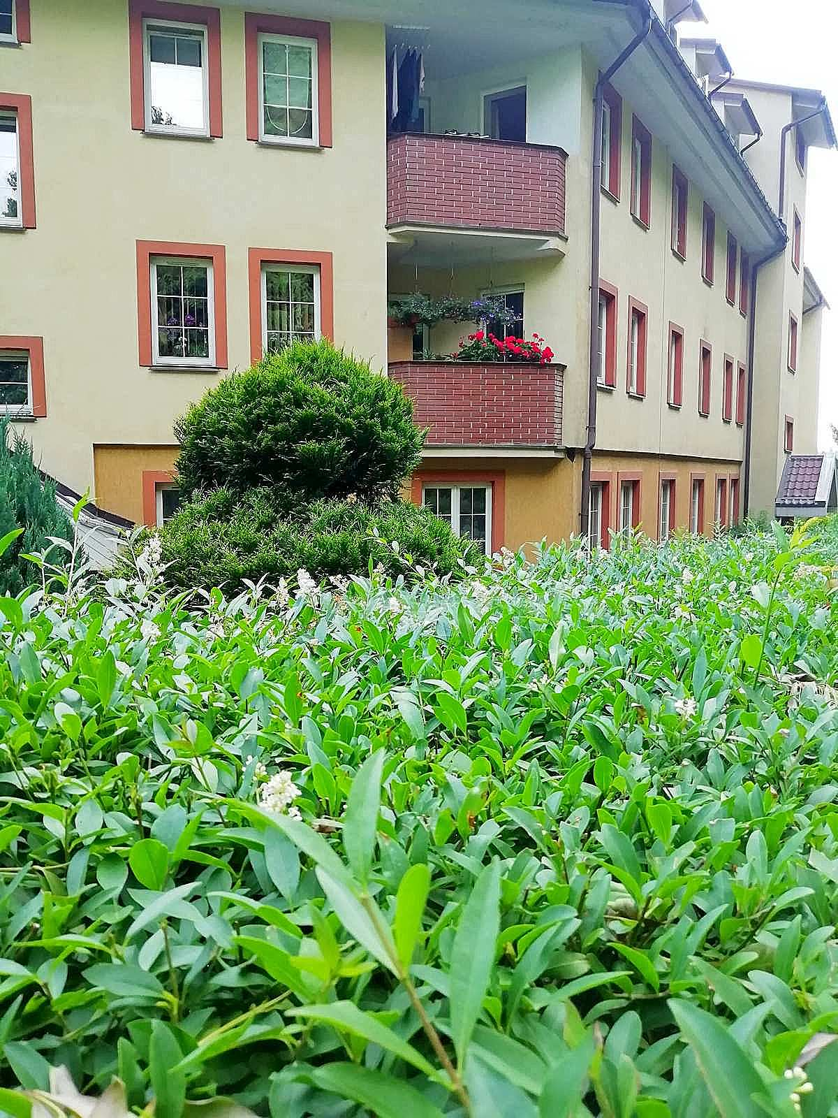 otoczenie apartamentu fabryka endorfin w kłodzku/surroundings apartment Fabryka Endorfin Klodzko