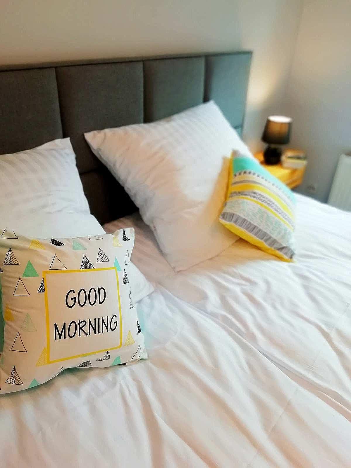 poduszki apartamentu fabryka endorfin w kłodzku/pillows in apartment Fabryka Endorfin Klodzko